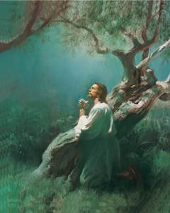 mormon-Jesus-histoire