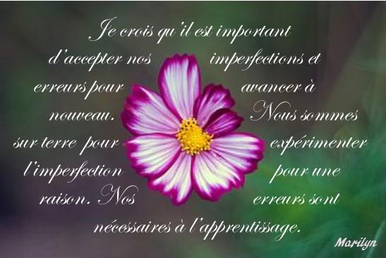 imperfection est necessaire