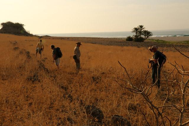 Expédition 2014: Ce que les archéologues ont trouvé à Khor Kharfot