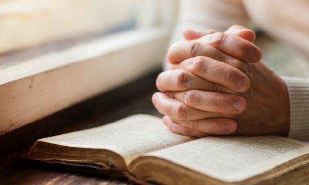 Le Livre de Mormon est un texte miraculeux selon un professeur catholique