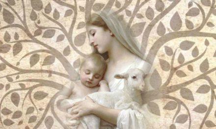 Qu'est ce que la vierge Marie a à voir avec l'arbre de vie?