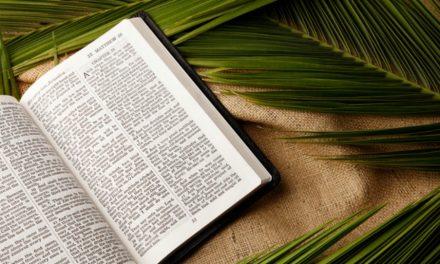 Le cri du Hosanna: signification et but