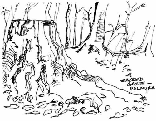 croquis du Buisson Sacré