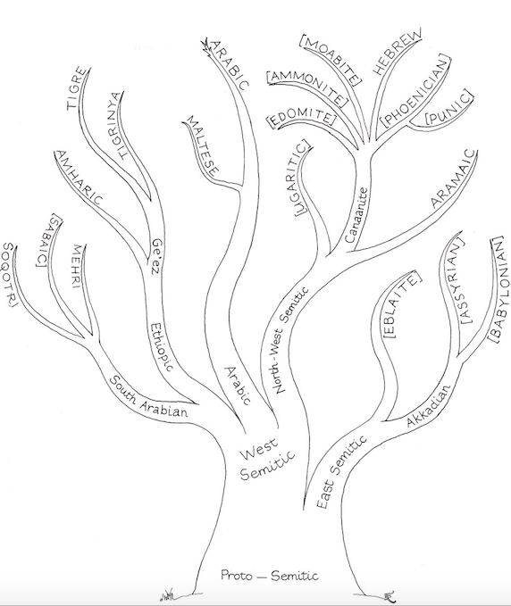 les langues indo-européennes et la tour de babel: compatibilité entre les deux?