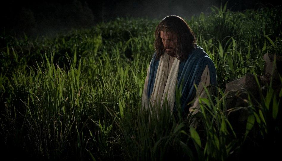 Le sacrifice expiatoire de Jésus-Christ