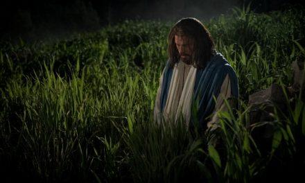 Viens et suis-moi, 10 au 16 juin: Matthieu 26; Marc 14; Luc 22; Jean 18