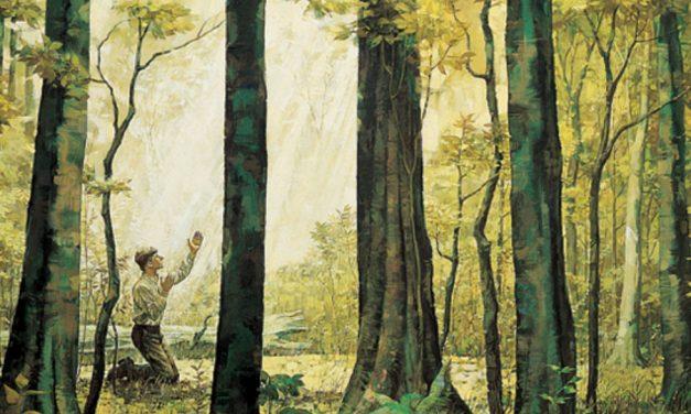 5 choses que la Première Vision nous enseigne sur la nature de Dieu